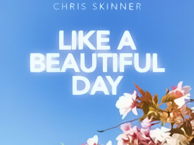 Chris Skinner - Like a beautiful day