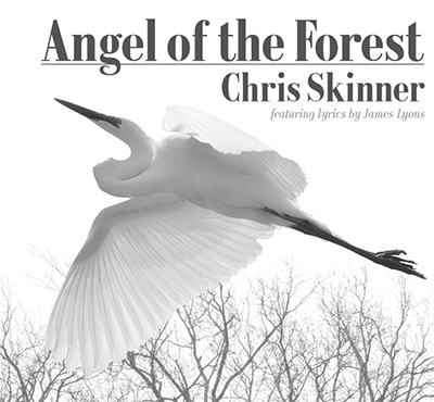 angel of the forest - chris skinner